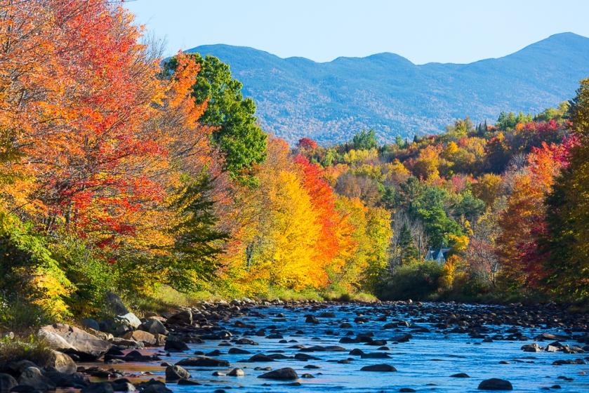 2016-NH-Fall-Foliage-9372.jpg